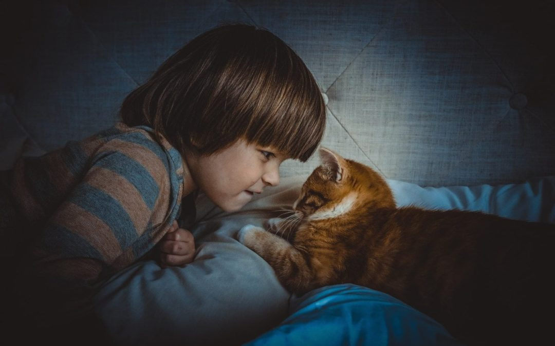 Cat Notes and Kid Quotes