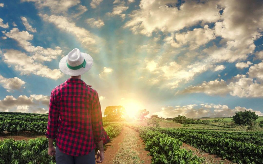 When God Made a Farmer